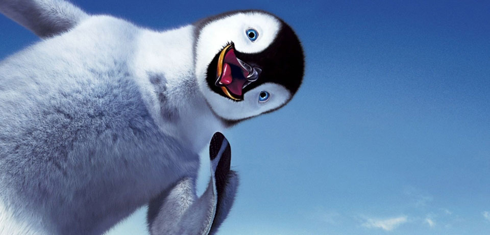 Random Penguin Photo